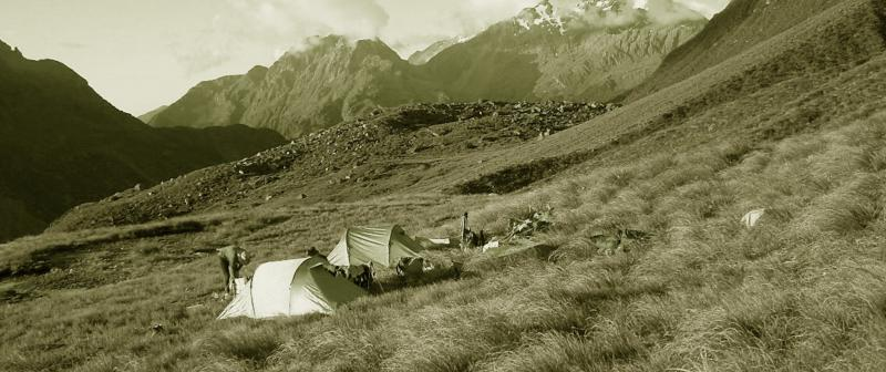 Tussock campsite - Corporate